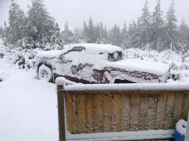 Summer Snow Falls In Parts Of Newfoundland Never Seen It This Late June