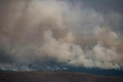 B.C. says expanding emergency alert for wildfires is a priority, but no timeline set