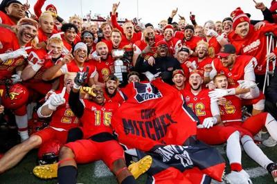 Calgary Dinos advance to Vanier Cup by downing McMaster in Mitchell Bowl
