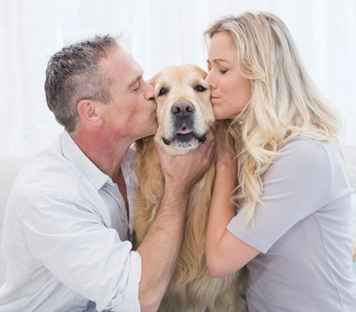 Animal lovers dating service