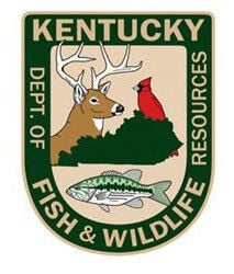 Chronic Wasting Disease causing deer hunting restrictions in W.Ky.