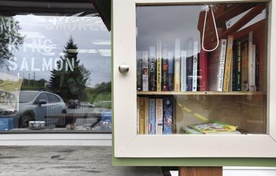 Cindy's Little Library
