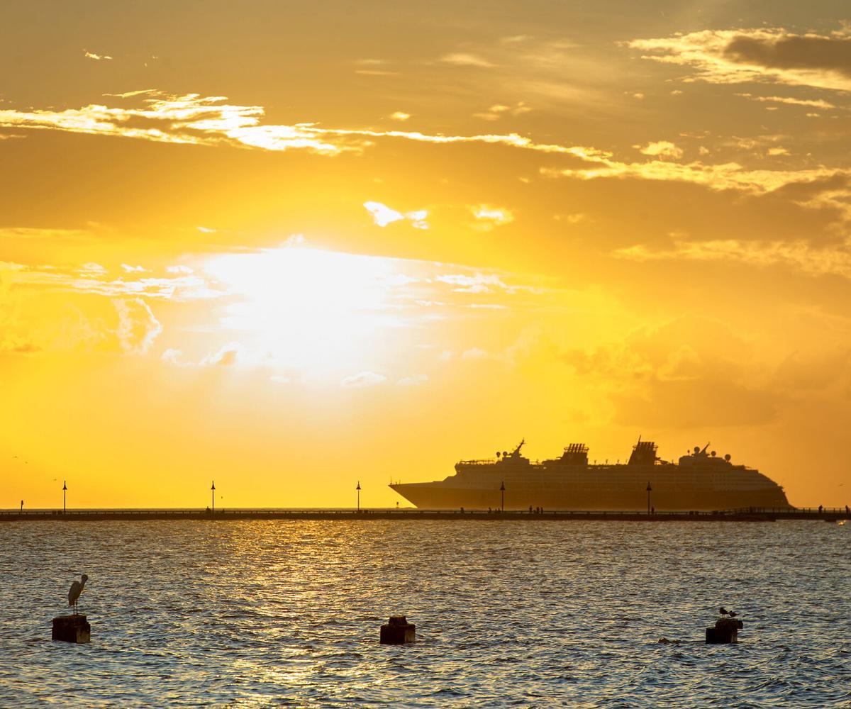 Cruise ship bill