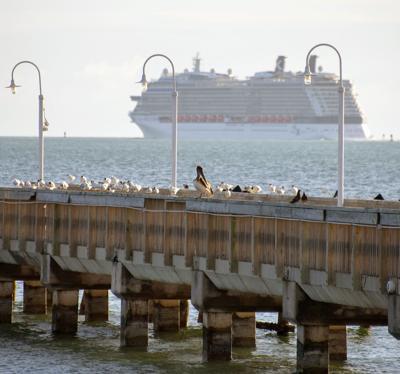 Cruise ship bill main