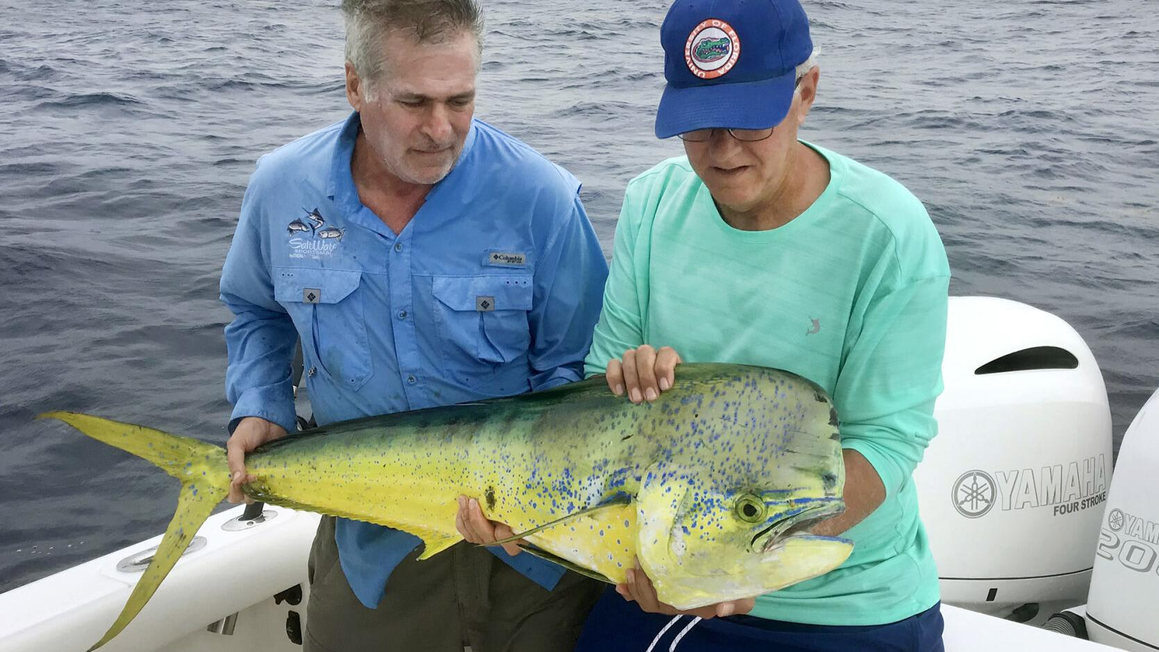 Fishing council seeks input on dolphin and wahoo