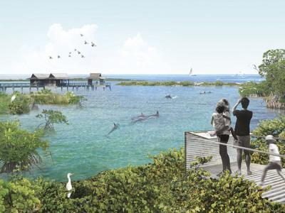 Aquarium Sanctuary