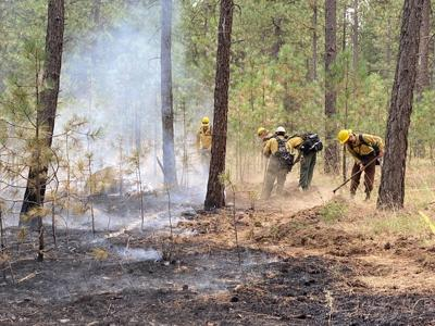 Half-acre brush fire 100 percent contained near Liberty Lake