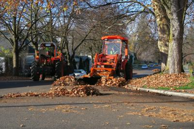 Leaf pickup in Browne's Addition on Thursday/Friday