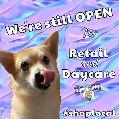 Yuppy Puppy Stays Open