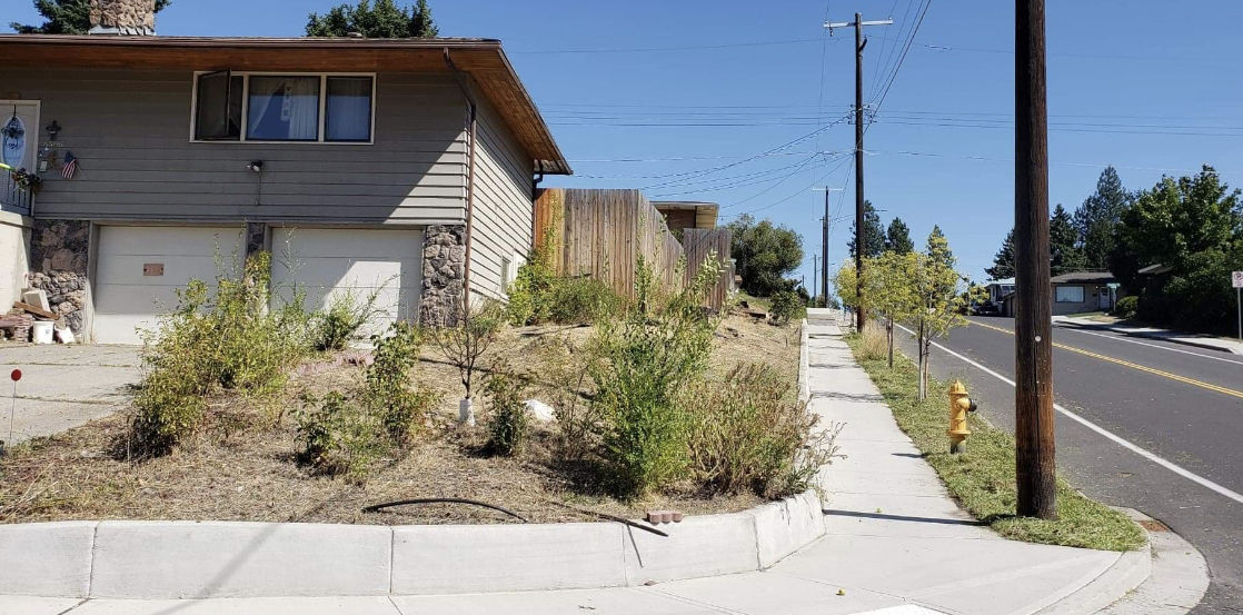 "Strangers help struggling north Spokane woman with ""overwhelming"" yard work"