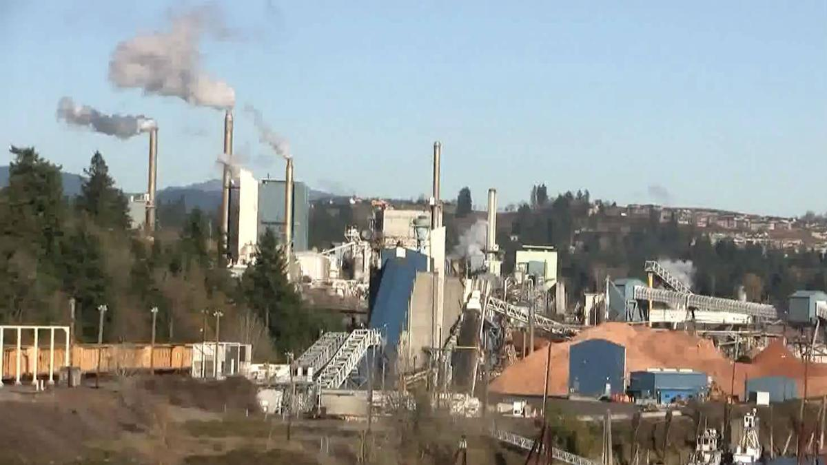 Camas paper mill to cut 243 jobs starting in May | News