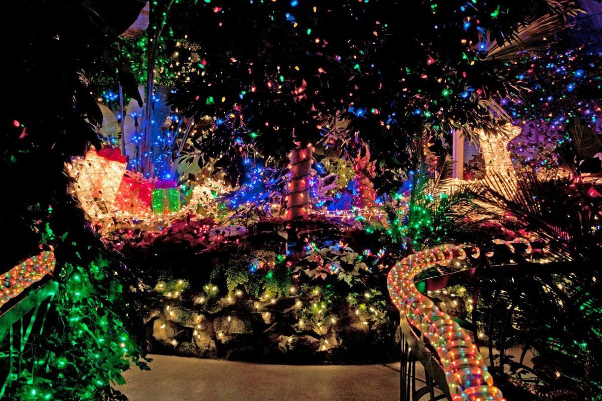Manito Park Christmas Lights 2020 Holiday Lights return to Manito Park's Gaiser Conservatory Friday