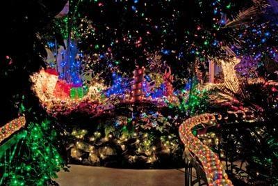 Gaiser Conservatory Holiday Lights
