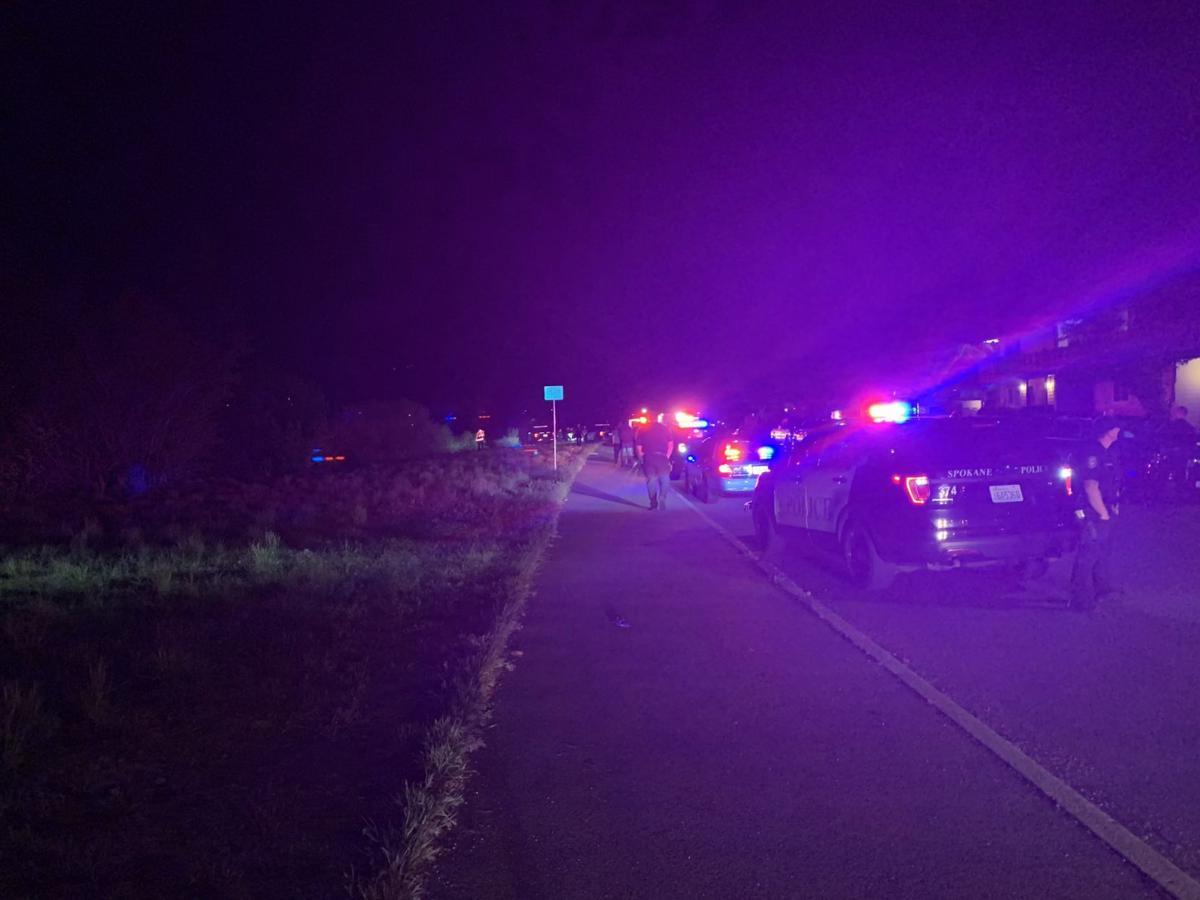 PHOTO: Spokane River Car Crash