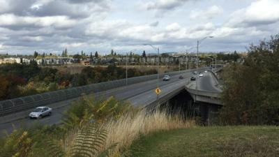 Woman calls for barriers on Spokane bridges after attempted jump