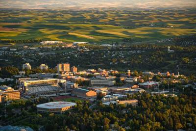 Washington State University WSU Pullman