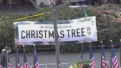 PHOTO: 2019 Rockefeller Center Christmas Tree