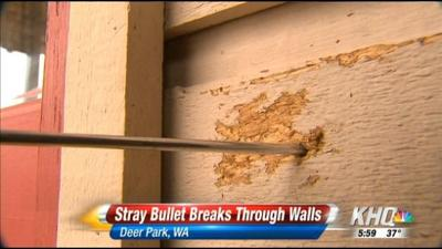Stray Bullet Bulldozes Into Deer Park Home