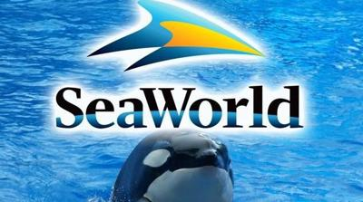 SeaWorld has new ad campaign after disparaging documentary