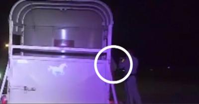Lemur DUI Arrest
