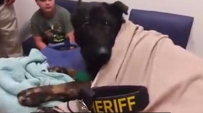 """WATCH: Texas K9 honored with """"Last Call"""" in final moments"""