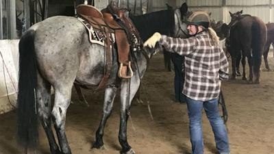 Spokane C.O.P.S. Mounted Patrol units back at parks this summer