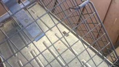 Despite angered neighbors, cat trapping is legal in Spokane