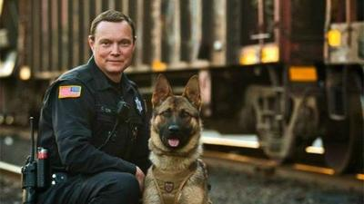 K9 Bane finds suspect hiding in a building after foot chase