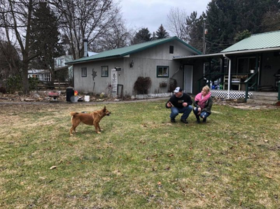 Homeward Bound: Lost dog comes home to Coeur d'Alene from Colorado