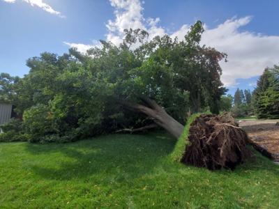 City of Spokane totals $3 million in wind storm damage