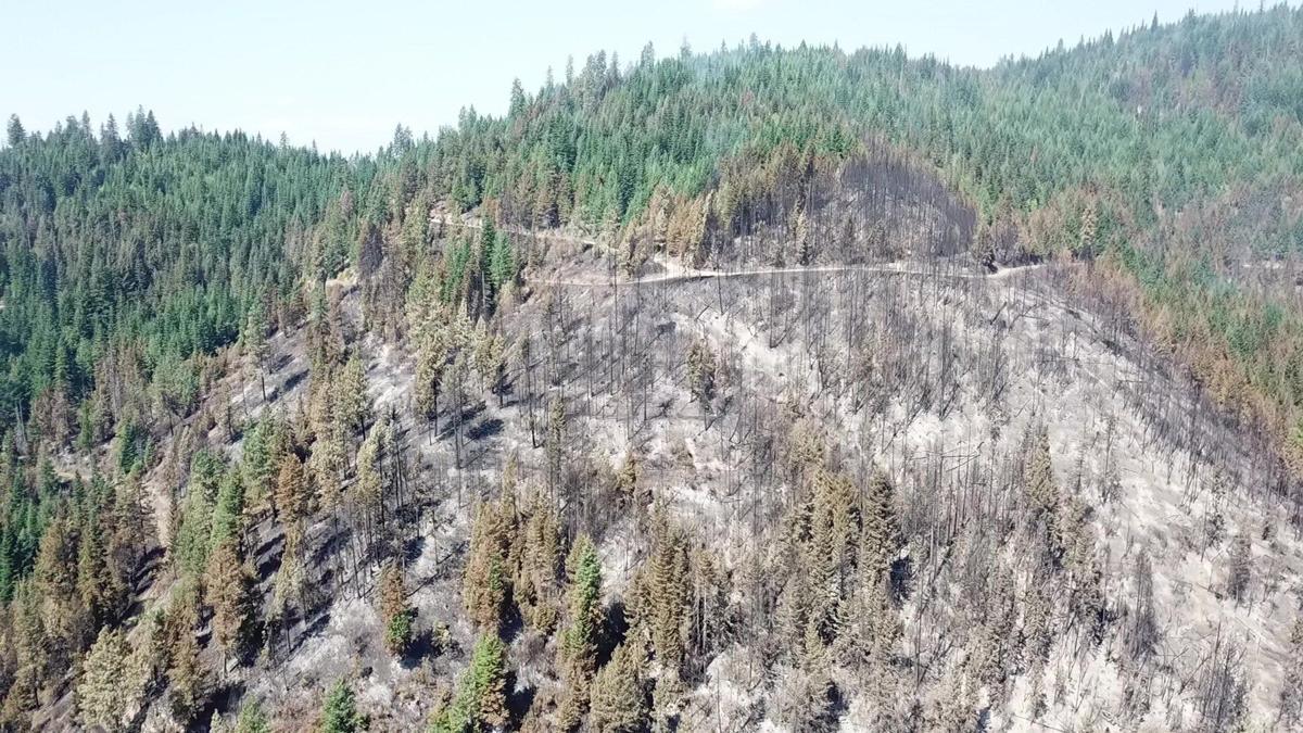 CCC Fire Idaho
