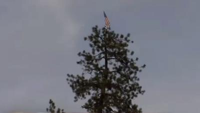 Mysterious flag atop tree appears, then disappears near Fourth of July Pass