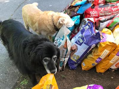 Spokane family keeps daughter's legacy alive with pet food drive, but they are under their collection goal