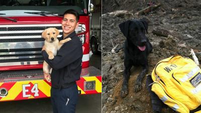 CdA FD Disaster Dogs