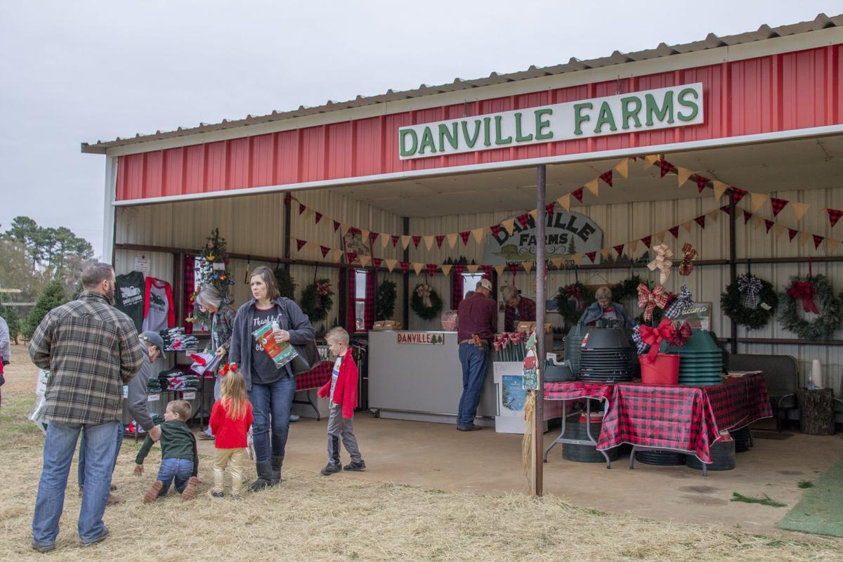 Danville Farms Christmas Trees 2.jpg