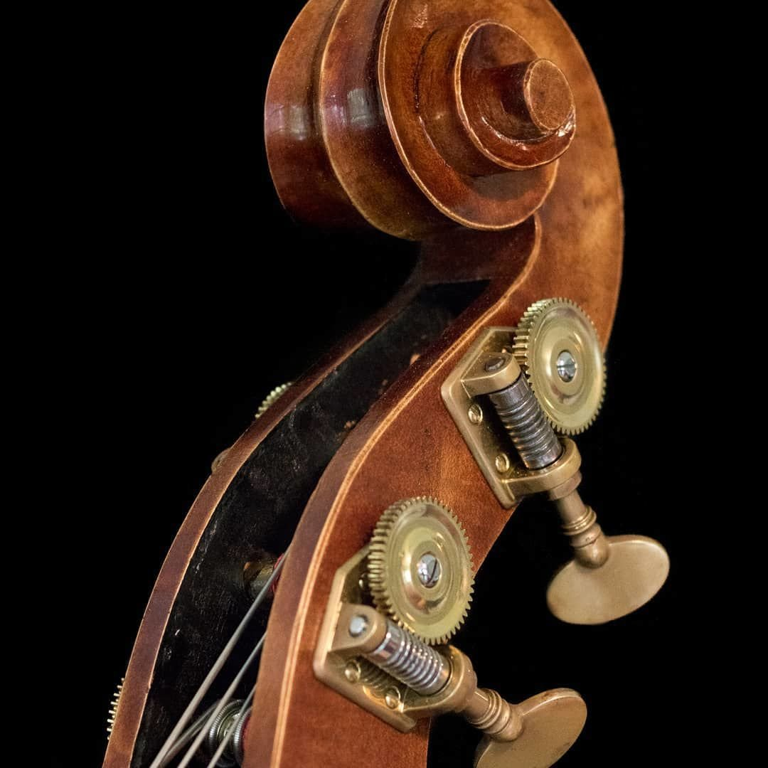 Luthier (1)