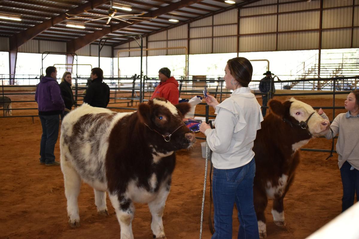 Gregg County Youth Expo Jackpot show