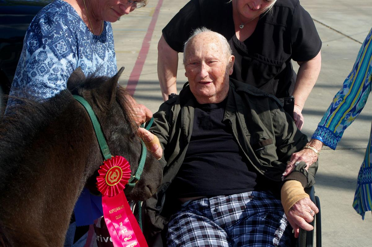Nursing home resident reunited with horses