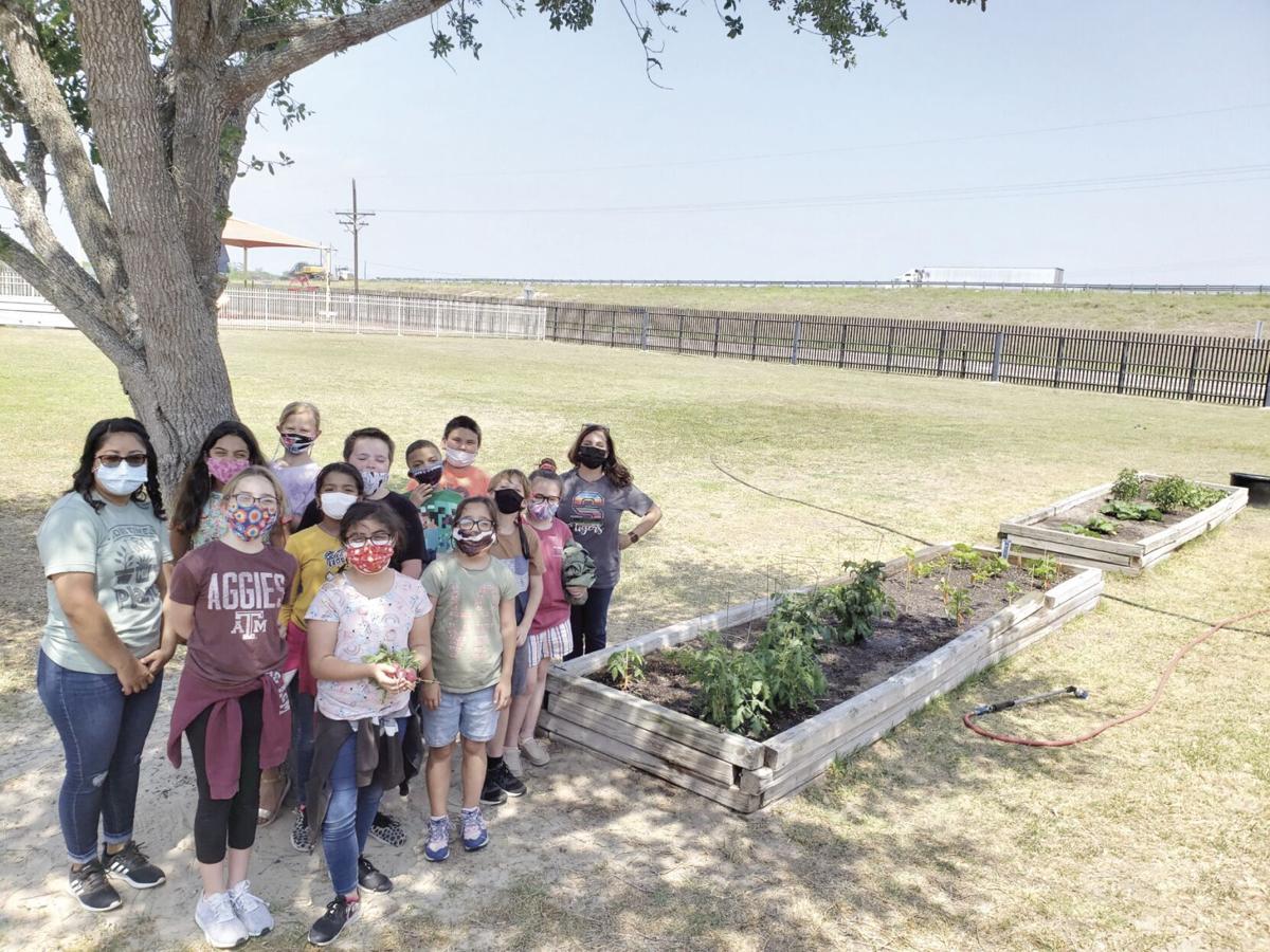 Sarita Elementary wins best overall garden