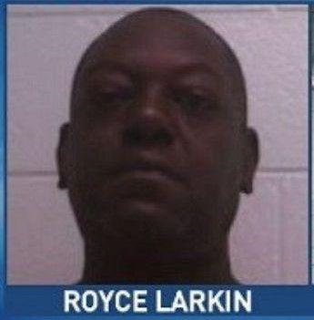 Royce Larkin (2).jpg