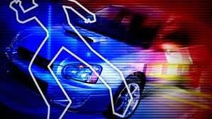 One man dies, two seriously injured, by passing motorist in Camden Co