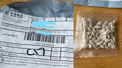 Missouri's Ag Department warns of strange seeds shipped around the U.S.