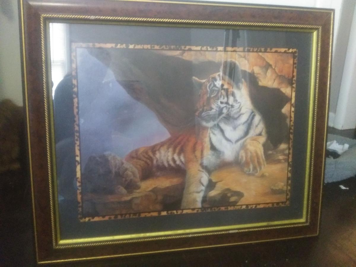 Beautiful tiger picture image 1