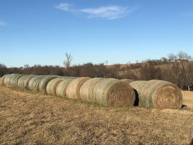 36 Big Bales Mixed Grass/Clover hay $58/bale image 1