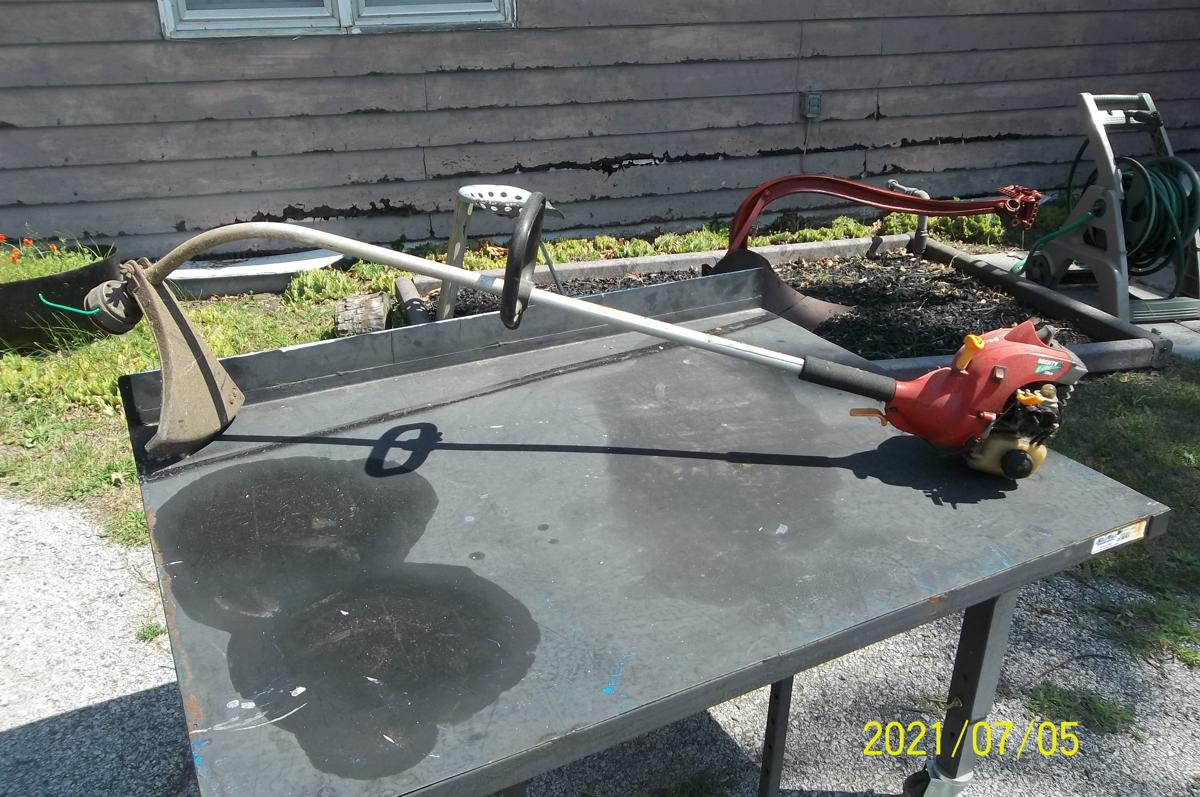 weed eater image 1