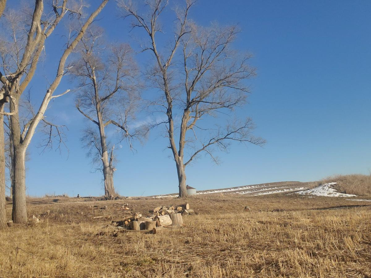 1/4 acre lot for sale in silver city image 1