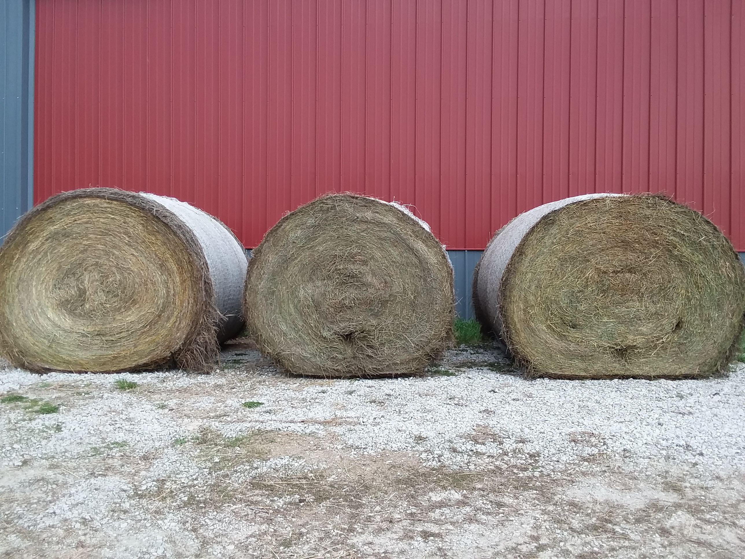 Hay For Sale image 1