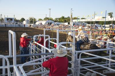 Lenox Rodeo