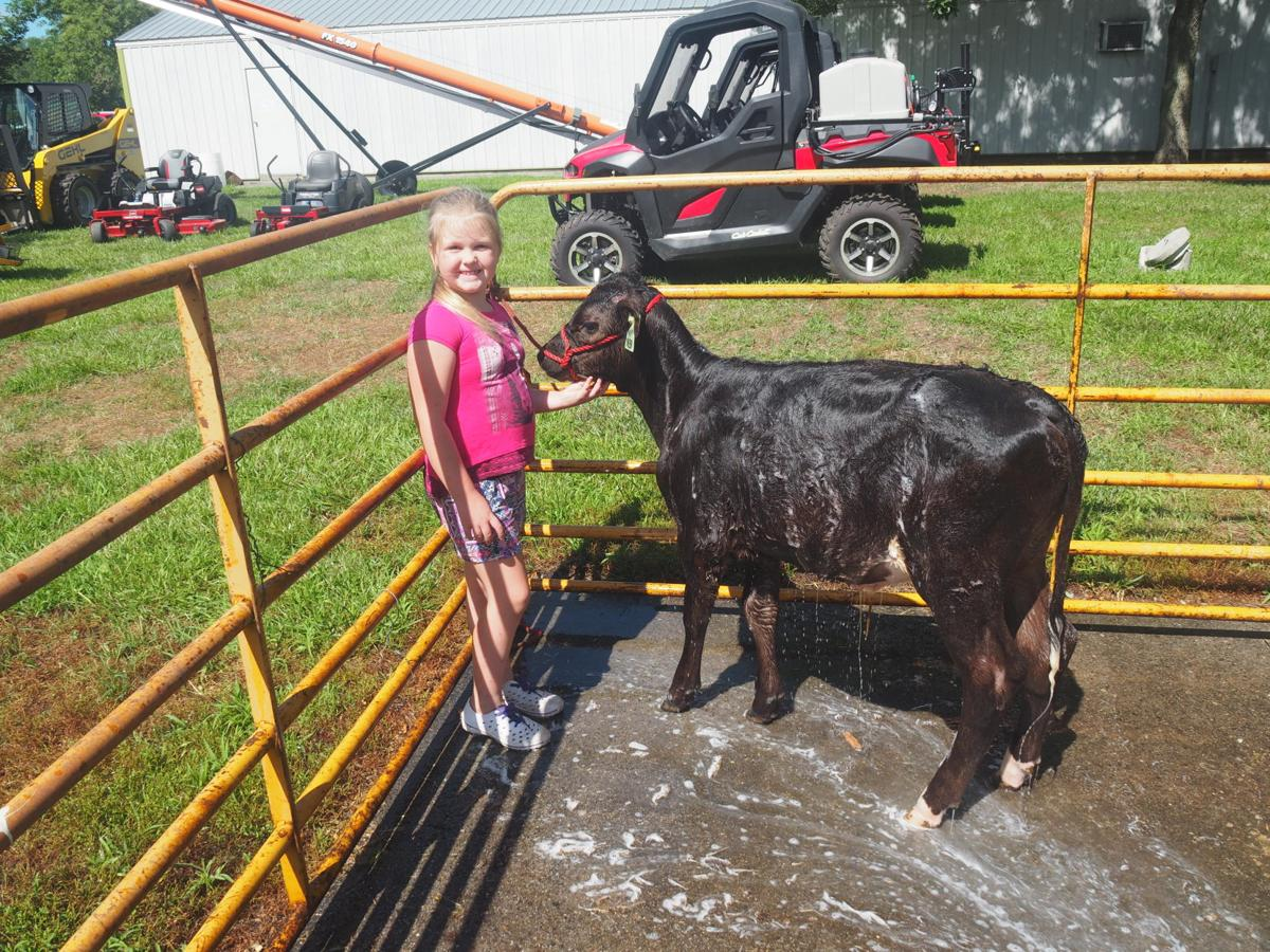 2019 Shelby County Fair-Harlan, Iowa