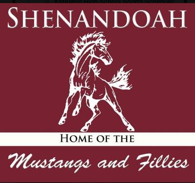 Shenandoah Fillies